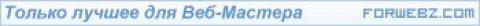 Рекламный баннер для сайта для веб-мастеров ForWebz