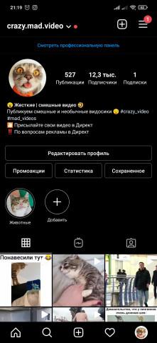 Страница с жёсткими и смешными видео в Instagram